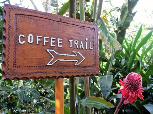 TrailCoffee